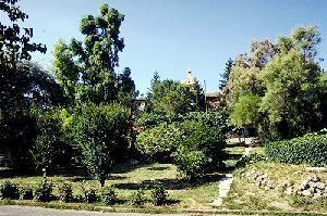 Orto Botanico di Perugia